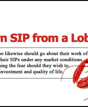 Learn SIP from Lobsters